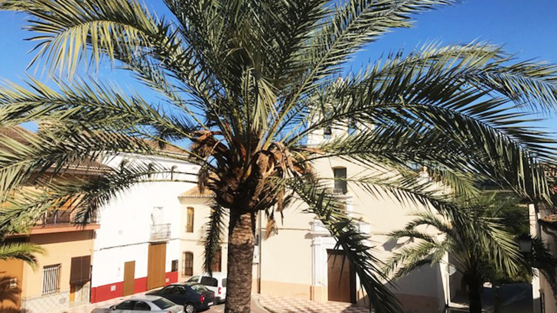 Helpful guides with the property buying process in Spain
